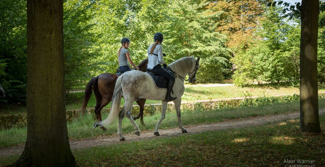 Trictracteambuilding-balade-a_cheval-4